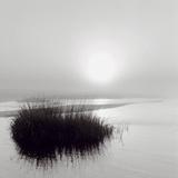 Fog over Katama Affiches par Michael Kahn