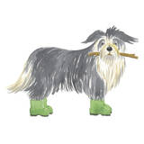 Shaggy Dog I Poster by Kate Mawdsley
