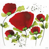 Poppy Passion I Giclee Print by Jean Picton