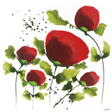 Poppy Passion II Giclee Print by Jean Picton