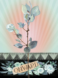 Onward Giclee Print by Anahata Katkin