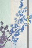 Hawthorn Stripe Giclee Print by Sarah Cheyne