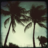 Miami Vintage II Giclée-tryk af Tony Koukos