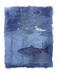 Cyanotype II Art by Ken Hurd