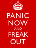 Panic Now And Freak Out Keep Calm Inspired Print Poster Stretched Canvas Print