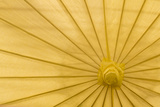 Yellow Umbrella Photographic Print by Kathy Mahan