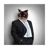 Funny Fluffy Cat in a Business Suit Prints by Sergey Nivens