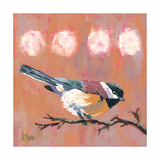 Delight Chickadee Photographic Print by Molly Reeves