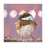 Hellow Chickadee Photographic Print by Molly Reeves