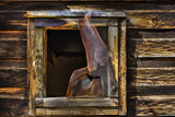 Cabin Window Photographic Print by Kathy Mahan