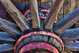 Wagon Wheel II Photographic Print by Kathy Mahan