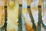 Lake Powell Reflections III Photographic Print by Kathy Mahan