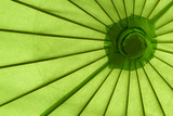 Green Umbrella Photographic Print by Kathy Mahan
