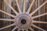 Wagon Wheel I Photographic Print by Kathy Mahan