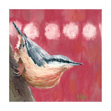 Hope Nuthatch Photographic Print by Molly Reeves