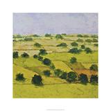 Dusty Meadows Edition limitée par Allan Friedlander