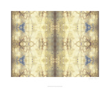 Mirrored Abstraction I Premium Giclee Print by Jennifer Goldberger
