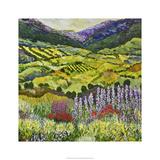 Where Flowers Bloom Edition limitée par Allan Friedlander