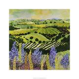 Wildflower Ridge Edition limitée par Allan Friedlander