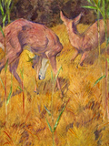 Deer in the Reed Art by Franz Marc