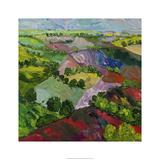 Deep Ridge Red Hill Edition limitée par Allan Friedlander