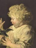 Portrait of a Child with Bird Kunstdrucke von Anthony Van Dyck