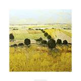 Summer End Edition limitée par Allan Friedlander