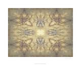 Mirrored Abstraction IV Premium Giclee Print by Jennifer Goldberger