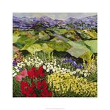 High Mountain Patch Edition limitée par Allan Friedlander