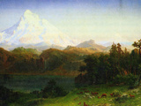 Mt. Hood Oregon Posters by Albert Bierstadt