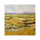 Short Hill Edition limitée par Allan Friedlander