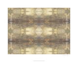 Mirrored Abstraction III Premium Giclee Print by Jennifer Goldberger