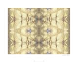 Mirrored Abstraction II Premium Giclee Print by Jennifer Goldberger