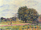 Walnut Trees in the Sun, in Early October Posters by Alfred Sisley