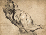 Study of Man's Torso Prints by Peter Paul Rubens