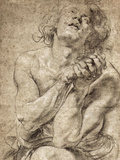 Study of Daniel in the Lion's Den Posters by Peter Paul Rubens