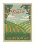Florida, Taste the Sunshine Prints by  Anderson Design Group