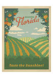 Florida, Taste the Sunshine Poster by  Anderson Design Group