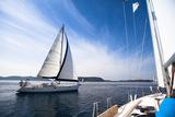 Regatta on the Sea. Sailboat. Yachting. Sailing. Travel Concept. Vacation. Posters by De Visu