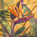Splash of the Tropics I Premium Giclee Print by Nanette Oleson