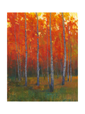 Changing Colors II Poster von Tim O'toole