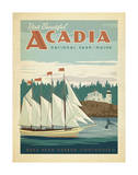 Acadia National Park, Maine Prints by  Anderson Design Group