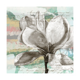 Pastel Magnolias I Posters by Jennifer Goldberger