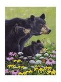 Ours noirs Affiches par Fred Szatkowski