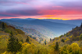 Autumn Morning in the Smoky Mountains National Park. Photographic Print by  SeanPavonePhoto