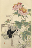 Crane and Peony Plakaty autor Bairei