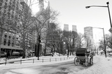 Winter Snow in Central Park, Manhattan, New York City Photographic Print by  Zigi