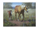 Comin' In Premium Giclee Print by Jack Sorenson