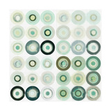 Mint Circles I Premium Giclee Print by Amy Lighthall