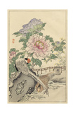 Pheasant and Peony Affiches par  Bairei